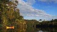 Tarapoto Selva